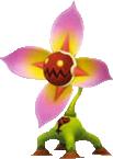 Schauderpflanze